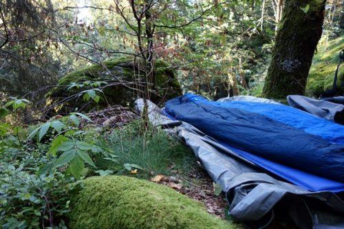 Im Wald übernachten
